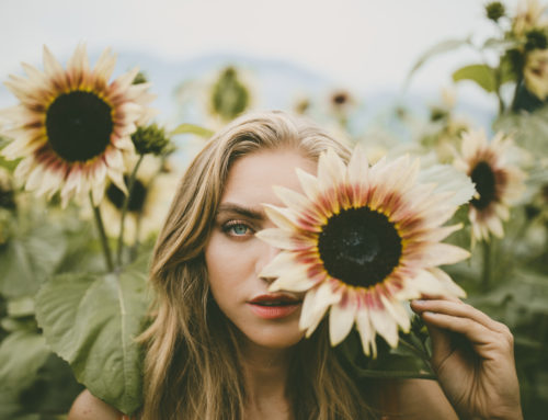 FINAL WEEKEND: Chilliwack Sunflower Festival
