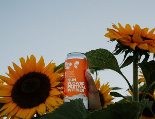 Old Yale Brewing X Chilliwack Sunflower Festival