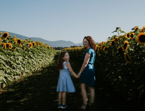 2020 Chilliwack Sunflower Experience – EXTENDED!